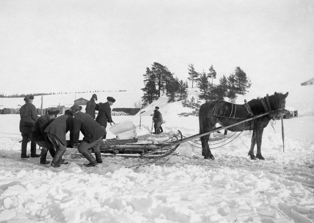 Miehet nostavat jäätä hevosen vetämääm rekeen.